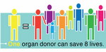 One Donor Can Save 8 Lives